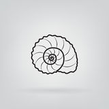 Sketch of a sea shell on a gray background Stock Image