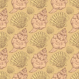 Sketch sea shell in vintage style Stock Images