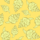 Sketch sea shell in vintage style Royalty Free Stock Photography
