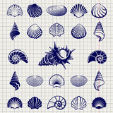 Sketch of sea shells. Vector illustration. Sea shell silhouettes set on notebook page Royalty Free Stock Photos