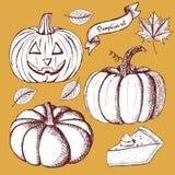 Sketch set of pumpkins Royalty Free Stock Photos