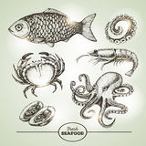 Sketch set of seafood. Royalty Free Stock Images