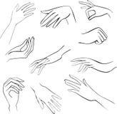 Sketch set woman hands vector illustration