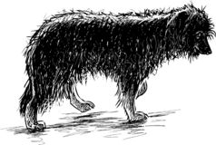 Sketch of a shaggy funny dog stock illustration