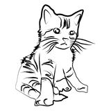 Sketch shape Cat Scouts icon cartoon design illustration nature seaside. Sketch shape Cat Scouts art cartoon design graphic icon illustration nature seaside Stock Photography