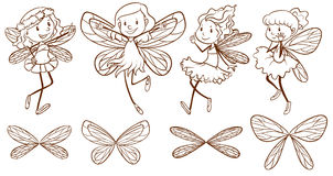 Sketch of simple fairies. Illustration of the sketch of simple fairies on a white background Stock Photos
