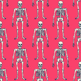 Sketch skeleton Stock Image