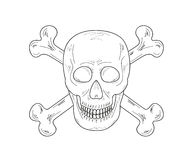 Sketch of the skull and bones Stock Photos