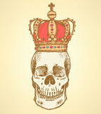 Sketch skull in crown,  vintage background Royalty Free Stock Image