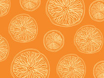 Sketch of sliced citrus fruit on orange background rectangular composition Stock Images
