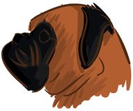 Sketch of a stilyzed bulldog isolated Royalty Free Stock Images