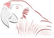 Sketch of a stilyzed parrot Royalty Free Stock Images