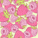 Sketch strawberry and raspberry in vintage style Royalty Free Stock Photos