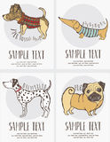 Sketch-style drawing of the dogs cards set Stock Photography