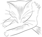 Sketch of a stylized isolated cat Royalty Free Stock Photo