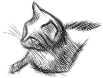 Sketch of a stylized isolated cat Royalty Free Stock Images