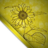 Sketch  sunflower background Royalty Free Stock Photography