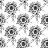 Sketch sunflower, vector vintage seamless pattern Royalty Free Stock Photo