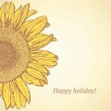 Sketch sunflower Stock Image