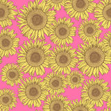 Sketch sunflower Stock Photography