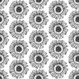 Sketch sunflower Royalty Free Stock Photo