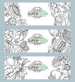Sketch superfood icons set. Vector illustration superfood berries and fruits banner template. Healthy detox natural product of camu camu, garcinia cambogia and royalty free illustration