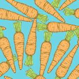 Sketch tasty carrot in vintage style Royalty Free Stock Photo