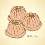Sketch tasty muffin in vintage style Stock Image