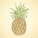 Sketch tasty pineapple in vintage style Royalty Free Stock Photography