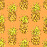 Sketch tasty pineapple in vintage style Stock Images