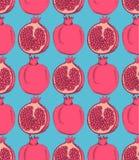 Sketch tasty pomegranates in vintage style Stock Photography
