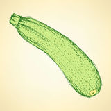 Sketch tasty zucchini in vintage style Stock Photo