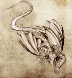 Sketch of tattoo art, modern dragon Royalty Free Stock Photography