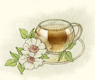 Sketch of tea cups and teapots. Fullsize raster artwork. Royalty Free Stock Images
