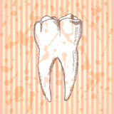 Sketch teeth, vector vintage background Royalty Free Stock Images