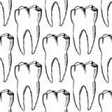 Sketch teeth, vector vintage seamless pattern Royalty Free Stock Image