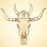 Sketch texas longhorn steer Stock Photo