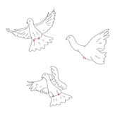 Sketch of three doves royalty free illustration