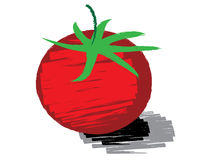 Sketch of tomato vector Royalty Free Stock Images