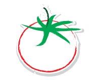 Sketch of tomato vector Stock Image