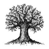 Sketch of a tree. Sketched black and white tree Stock Photo