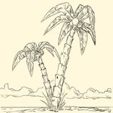 Sketch of tropical palm on island in ocean Stock Photography