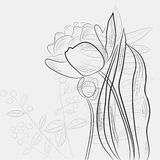 Sketch with tulips and plants Royalty Free Stock Image