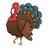 Sketch turkey Stock Photography