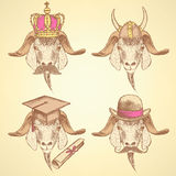 Sketch unusual goats set Royalty Free Stock Image