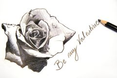 Sketch for Valentines day. Hand sketching the rose and writing be my Valentine Royalty Free Illustration