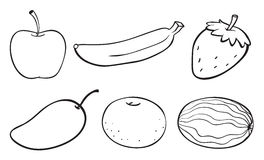 A sketch of various fruits Stock Photo