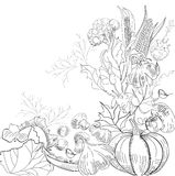 Sketch with vegetable. Universal template for greeting card, web page, background Stock Photo