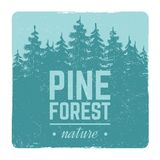 Sketch vintage nature pine and fir tree forest vector retro emblem with silhouette trees. Sketch vintage banner and poster nature pine and fir tree forest vector Stock Image