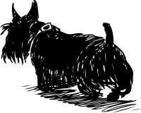 Sketch of a walking scottish terrier. Vector drawing of a black scottish terrier royalty free illustration